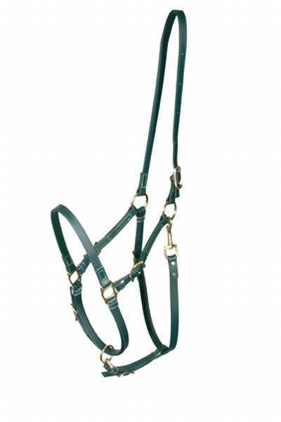 Marylot Clickbridle halstergedeelte (RVS)