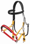 Zilco Halterbridle (mixed colours)
