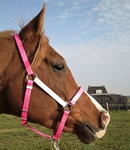Marylot Clickbridle halstergedeelte (messing)